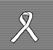 White Ribbon Campaign for Peace,South Asia